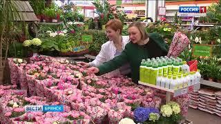 """""""Вести. Брянск"""" (эфир 19.04.2018 в 20:45)"""