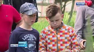 Всероссийский слёт юных краеведов на Брянщине