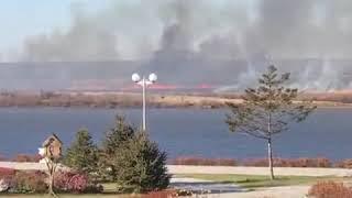 Хабаровские острова охватили пожары 5 ноября 2018