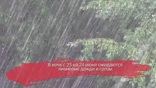 В Вологодской области ожидаются ливни с грозами