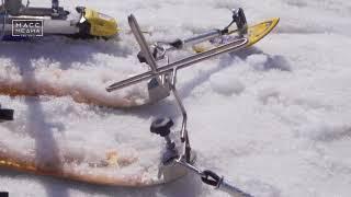 Камчатские тренеры поставят на лыжи детей-инвалидов | Новости сегодня | Происшествия | Масс Медиа