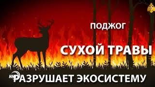 МЧС республики предупреждает о возгораниях