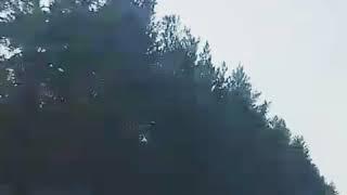 ДТП на Шанадском (хоринский тракт) 25.02.18