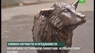 На Кировке поселился бронзовый Хатико