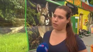 Зоопарк на контроле