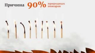 """Противопожарная кампания """"Останови огонь"""""""
