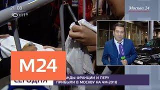Болельщики встретили сборные Франции и Перу в Шереметьево - Москва 24