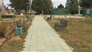 Жители Советского района решили облагородить две аллеи, двор и стадион