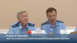 Ущерб от вырубки реликтового леса в Казачинско Ленском районе мог составить два миллиарда рублей