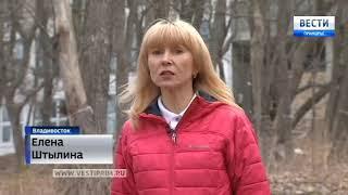 Высотки с видом на морг и лаборатории  химического института планируют построить во Владивостоке
