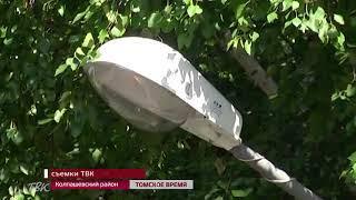 В Асиновском районе произошло ДТП с участием локомотива и иномарки