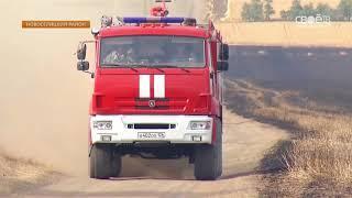 300 гектаров пшеницы сгорело на полях Новоселицкого района
