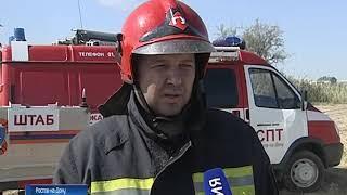 МЧС: пожар в Кумженской роще полностью потушили