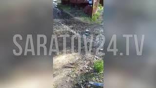 Дайджест саратовских аварий