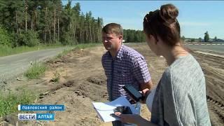 Прокуратура края разбирается в ситуации с продажей государственной древесины в регионе