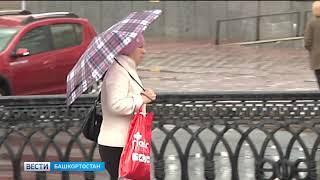 Спасатели вновь предупреждают жителей Башкирии о шквалистом ветре и грозах