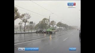 Вести Санкт-Петербург. Выпуск 14:25 от 29.10.2018