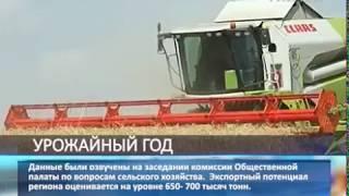 Уборочная кампания в Самарской области практически завершена
