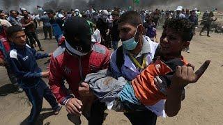 7 палестинцев застрелены израильскими военными на границе сектора Газа…
