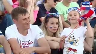 Вести-Волгоград. События недели. 17.06.18