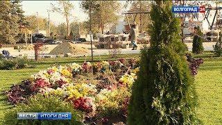 В сквере Пушкина высадили первую тысячу новых растений