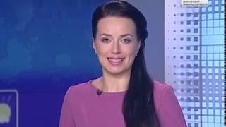 Вести Санкт-Петербург. Выпуск 17:00 от 12.11.2018