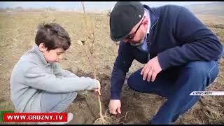 Чеченец вернулся из Норвегии, чтобы вести свое собственное дело