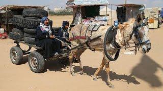 """Сектор Газа в преддверии """"Дня Катастрофы"""""""