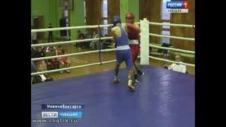 В Новочебоксарске юные боксёры разыграли награды открытого первенства города