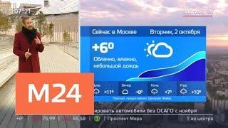 """""""Утро"""": облачная погода ожидается в столице 2 октября - Москва 24"""