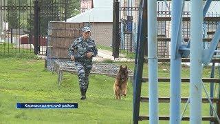 В Башкирию на обучение приехали более сотни полицейских-кинологов со всей России