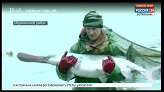 В Астрахани завершается кампания по зарыблению выростных прудов