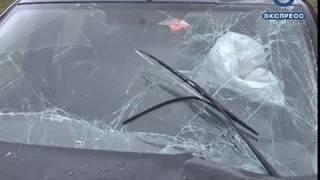 В Белинском районе столкнулись две иномарки, есть пострадавшие