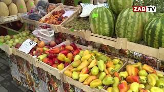 Арбузы, дыни и яблоки с уличных рынков Читы сдали анализы