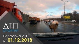 Подборка ДТП за 01.12.2018 год