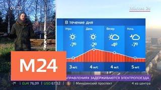"""""""Утро"""": морозная погода ожидается в столице 13 ноября - Москва 24"""
