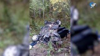 На трассе Зуево – Новая Ладога в аварии погибли два человека