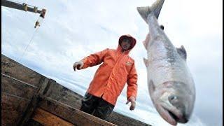 """""""Большая"""" уха и угощения из яранги: Дальний Восток отметит День рыбака"""