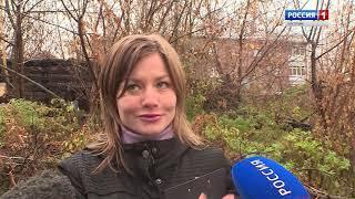 Костромские студенты и активисты ОНФ борются со свалкой в центральной части города