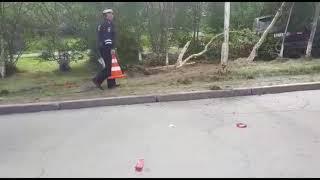 Водитель в состоянии алкогольного опьянения снес деревья на ул.Якутской в Магадане