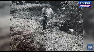 Депутат случайно сбил выбежавшего на дорогу приятеля
