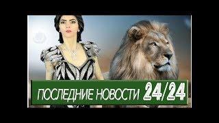 Штаб-квартиру YouTube расстреляла веган-зоозащитница, недовольная цензурой - Происшествия - МК