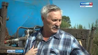 В хозяйствах Алтайского края заготавливают рекордные запасы сена