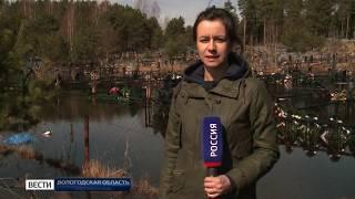 Воды по пояс: паводковая ситуация в Чагоде остаётся стабильно тяжёлой