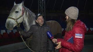 Артисты цирка из Северной Осетии уже несколько месяцев не получают деньги
