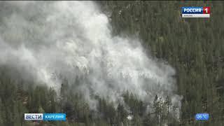Три лесных пожара произошли в Карелии за минувшие сутки