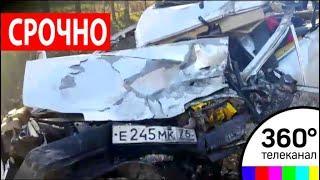 Автобус с детьми попал в ДТП: 15 детей пострадали