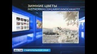 """""""Вести в сети"""". Выпуск #207"""