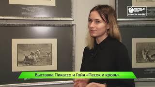 ИКГ Выставка Пикассо #8