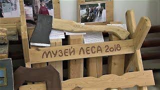 В Ханты-Мансийске откроют Музей леса